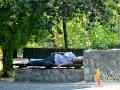 park-preko-puta-Skupstine_spavac-na-klupi