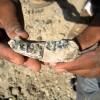 AKTUELNO: Otkriće koje mijenja sve udžbenike istorije