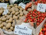 """PIJACA: Jagode u ,,Gintašu"""" od 2,5 do četiri eura"""