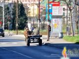 FOTO-ZUM: Konjska snaga, jedna ali vrijedna
