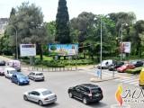 FOTO-ZUM: Pozdrav Zelenila u Podgorici