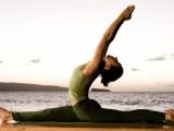 RAJKO RADULOVIĆ: Joga vodi umjerenosti, a to je početak zdravlja