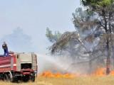 PODGORICA: Služba zaštite danonoćno radi na gašenju požara