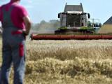 MINISTARSTVO POLJOPRIVREDE: Po 10.000 eura za 44 mlada poljoprivrednika