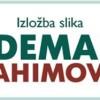 """CENTAR ZA KULTURU ROŽAJE: Izložbom slika prof. Aldemara Ibrahimovića otvara se galerija ,,Magaza"""""""