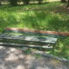 NAŠE NARAVI: Polomljena klupa u Karađorđevom parku
