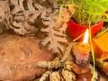 ZANIMLJIVOSTI: Pravoslavni božićni običaji širom svijeta