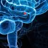 NAUKA: Zarobljena emocionalna energija uzrokuje sve bolesti