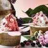 TRENDI HRANA: Sladoled od jorgovana