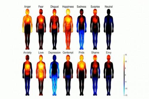 NAUKA: Mapirano 100 osjećanja na djelovima tijela gdje se manifestuju