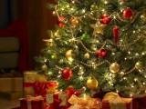 PREDSTAVLJAMO: Najljepše novogodišnje jelke širom svijeta