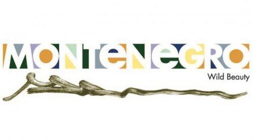 """NTOCG: Uspješno učešće na virtuelnoj poslovnoj radionici ,,New Deal Europe"""""""