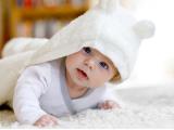 KCCG: Rođeno 12 beba