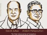 ŠVEDSKA: Džulijusu i Pataputijanu Nobelova nagrada za medicinu